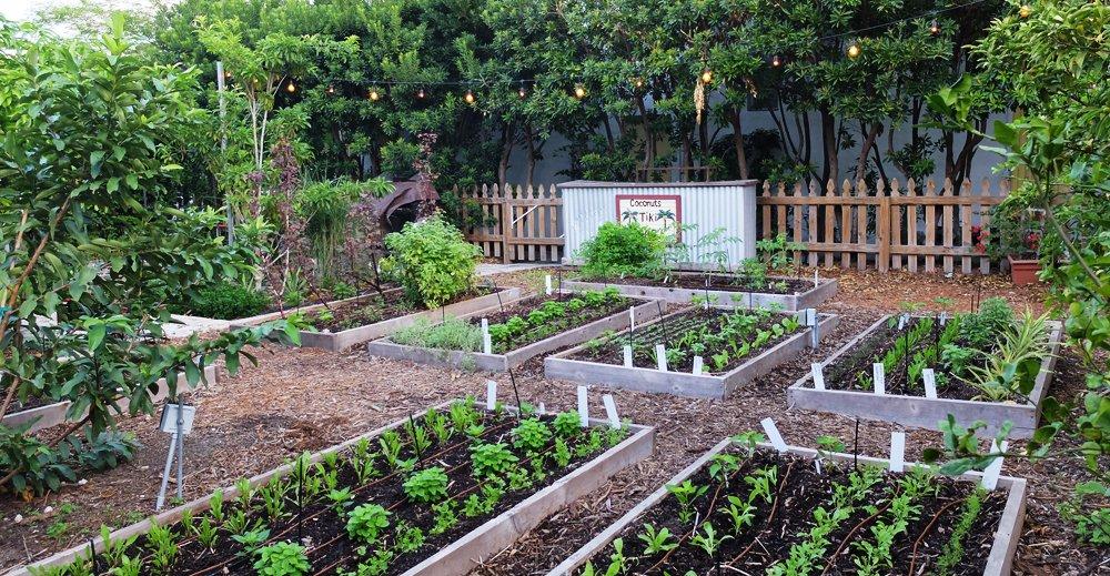 Freehand Miami Garden